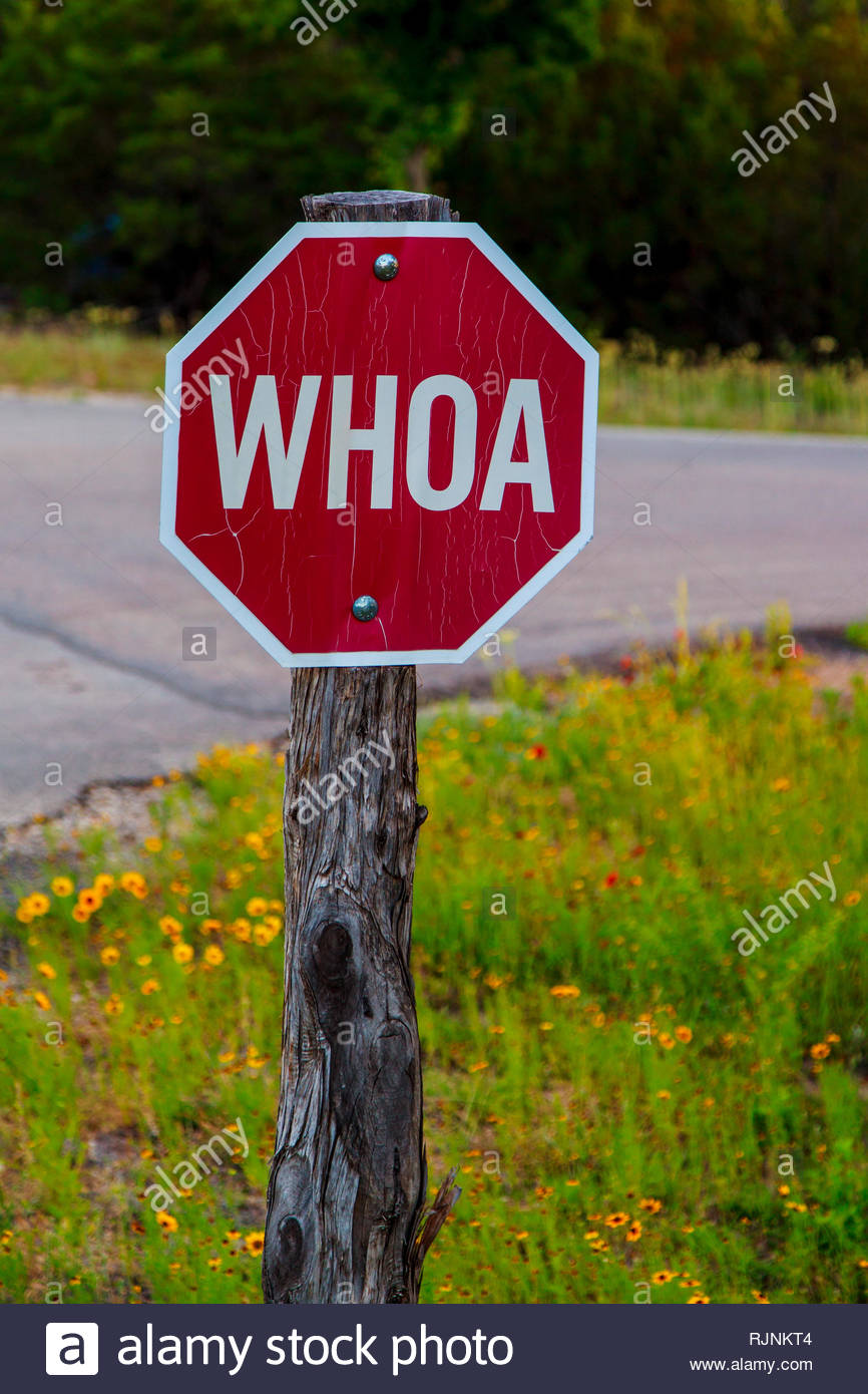 Old funny red road sign in Texas with Whoa instead of Stop Stock Photo