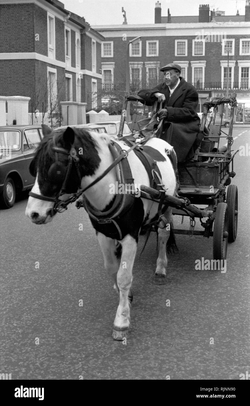 Rag and Bone man also called a Totter  collecting scrap metal and stuff to sell with his horse and cart, Notting Hill area of West London 1970. Collecting scrap for recycling re-cycling 1970s UK. HOMER SYKES - Stock Image