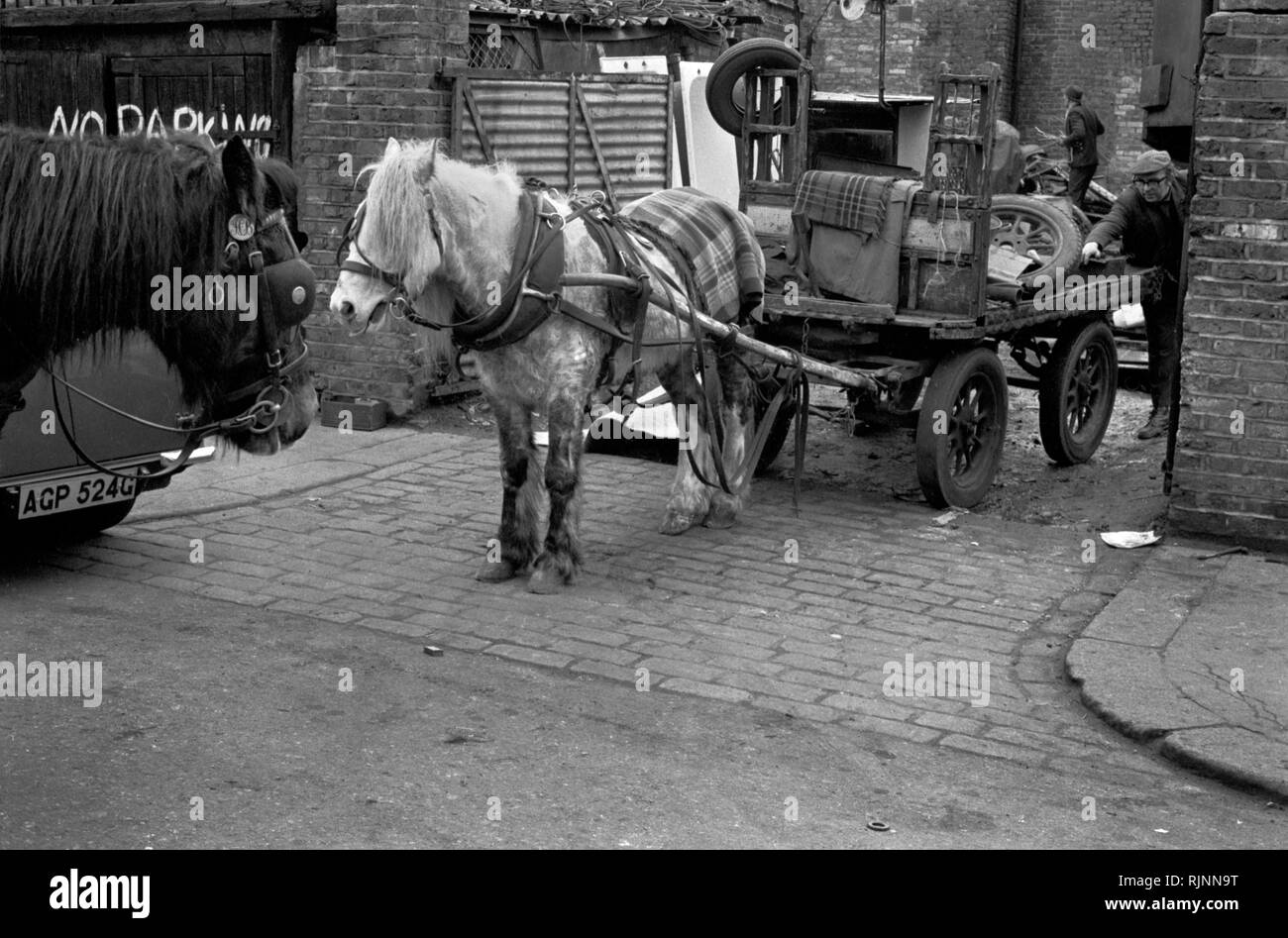 Rag and Bone men at the totters yard, unloading stuff collected during the day. Their horses were usually stabled at the yard. His horse and cart. Notting Hill area of West London 1970. Collecting scrap for recycling re-cycling 1970s UK. HOMER SYKES Stock Photo
