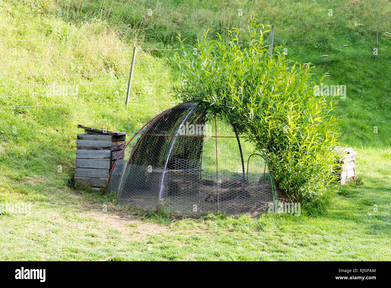 Rabbit hutch in a garden, summer, Moselle, France - Stock Image