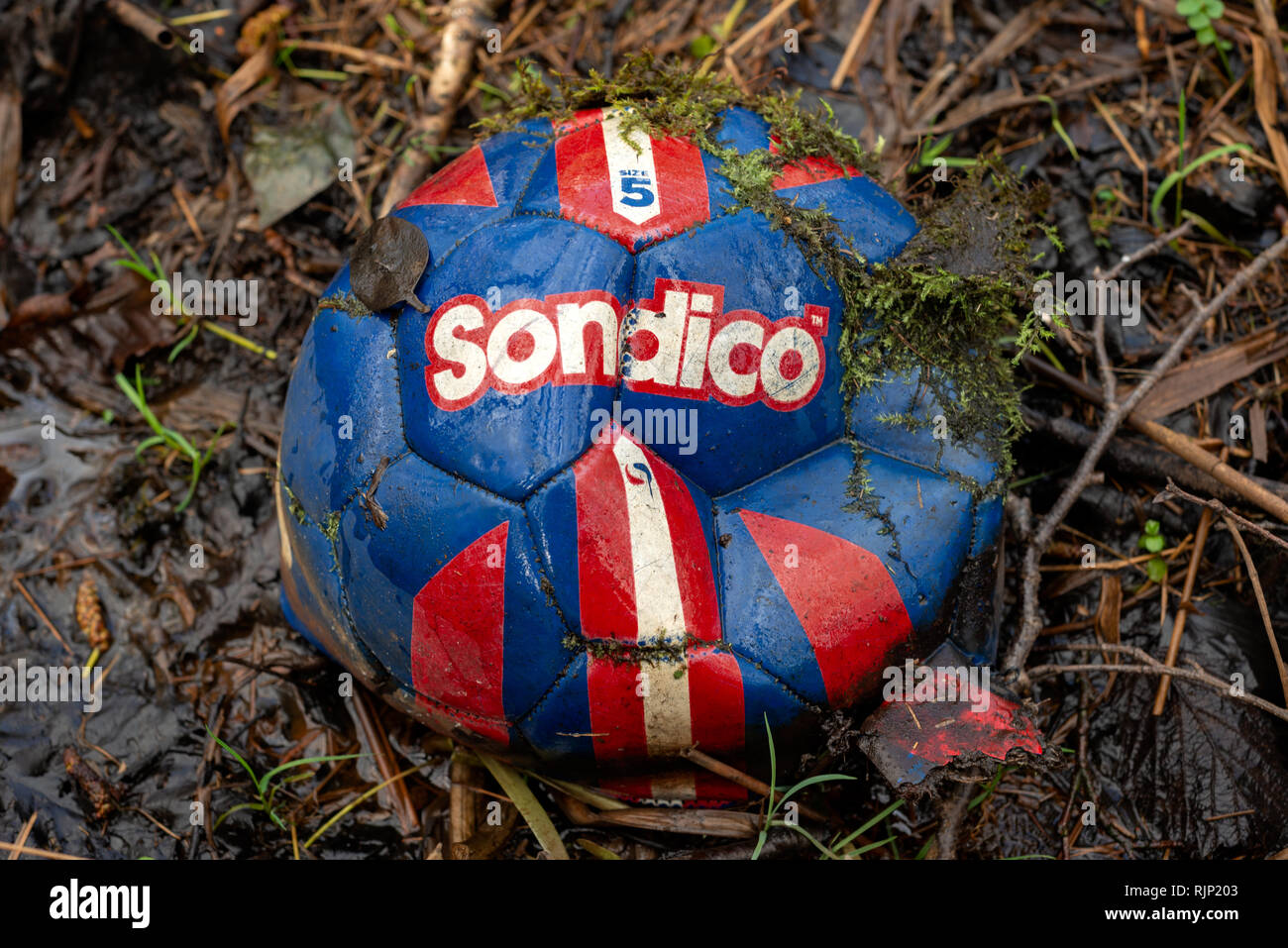 Old deflated abandoned red and blue Sondico football soccer ball. Useless object. - Stock Image