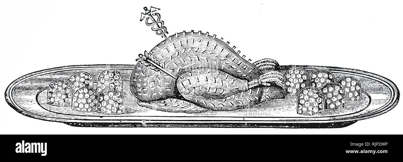 An engraving depicting a beautifully cooked turkey ready for the table. Dated 19th century - Stock Image