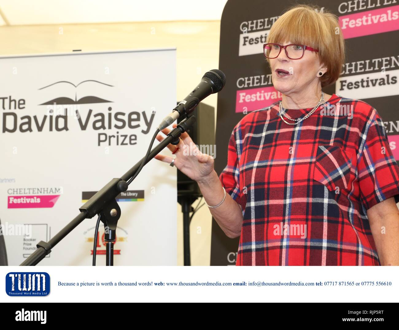 The David Vaisey Prize for Libraries Presentation with Alan Bennett at The Cheltenham Literature Festival -    Anne Robinson -  Sunday 8th of October  - Stock Image