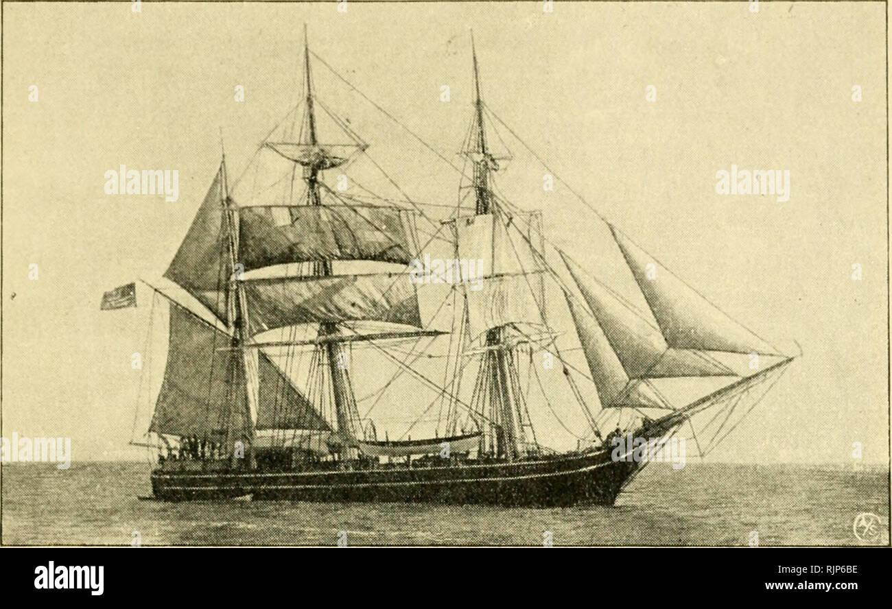 f66714617 Av hvalfangstens historie. Whaling. DEN GAMLE HVALFANGST 87 ...