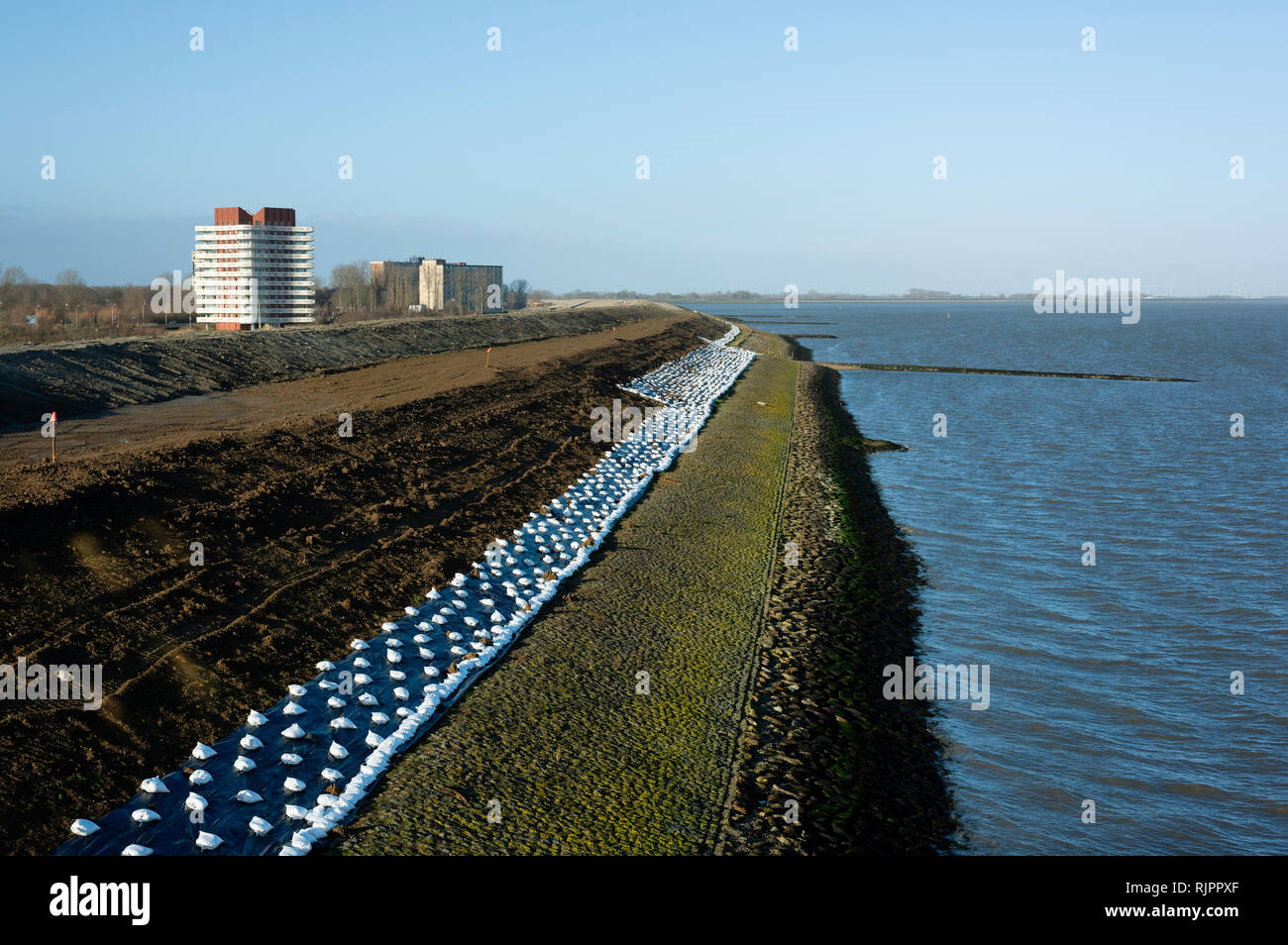Coastal landscape with reinforced sea dyke to withstand future storms, Netherlands Stock Photo