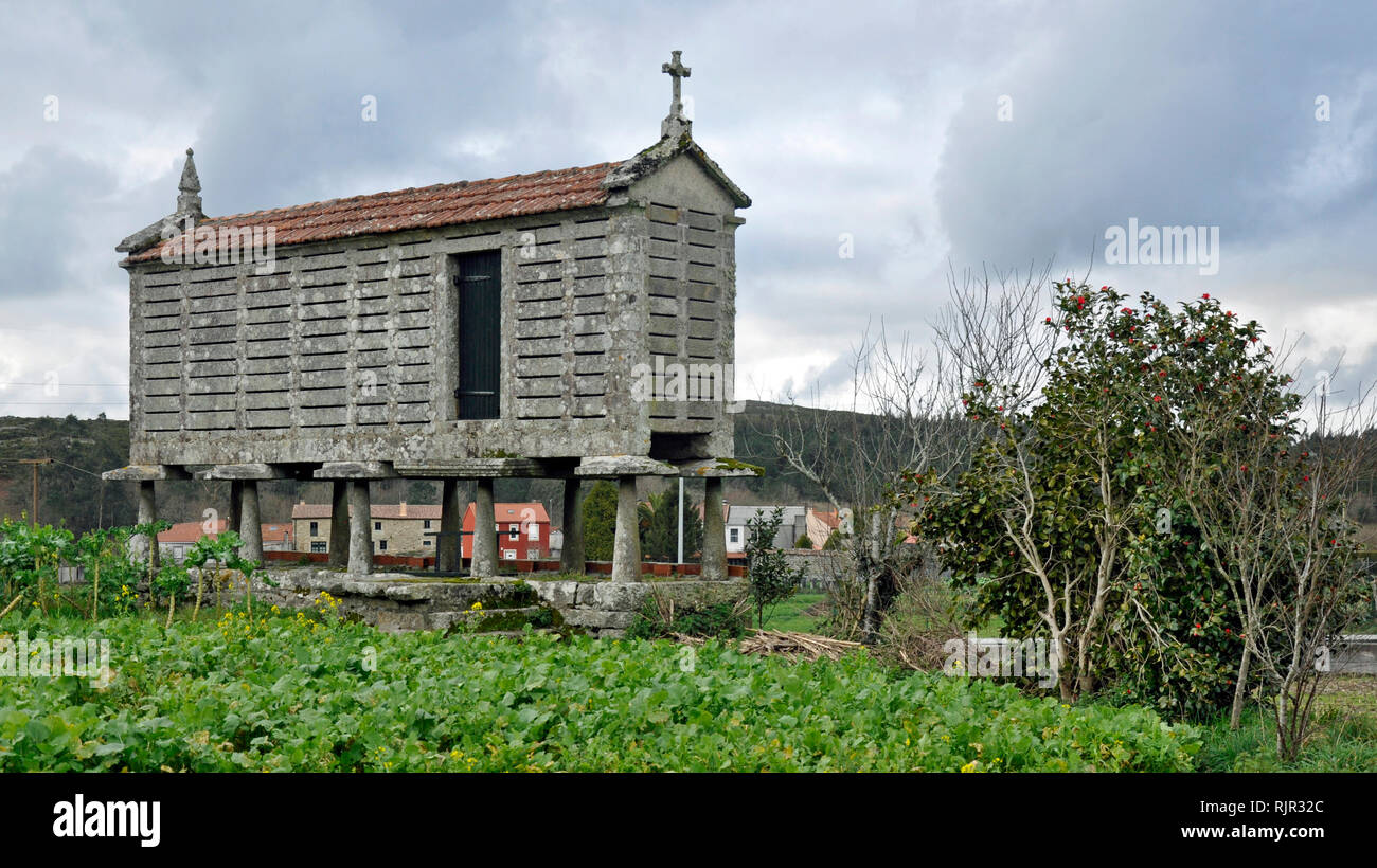 A traditional rectangular stone granary or 'hórreo', used for centuries in Galicia, Spain to store grain, keeping it dry and safe from rodents. - Stock Image