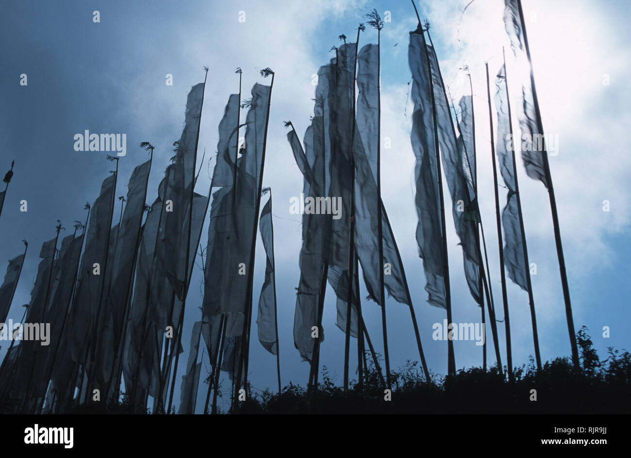 Prayer flags line the ridge of a hill in the small Himalayan township of Pelling, India. A former Tibetan kingdom still practicing Tibet's Mahayana Bu - Stock Image