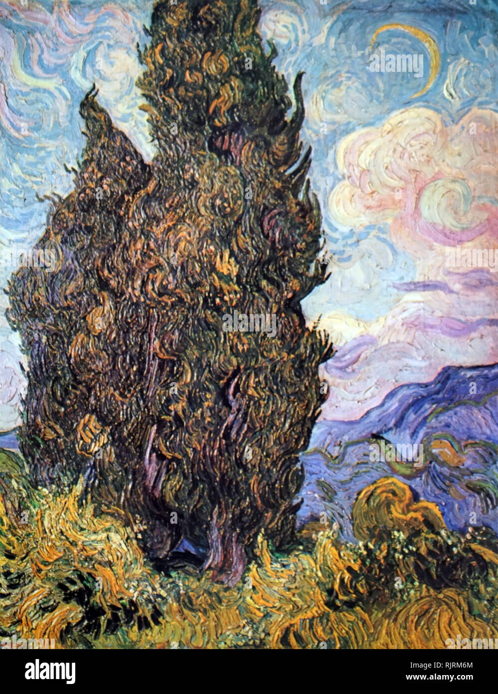 Cypresses; 1889, Oil on canvas, by the Dutch artist Vincent van Gogh (1853-1890). Painted shortly after Van Gogh began his yearlong stay at the asylum in Saint-Remy) - Stock Image