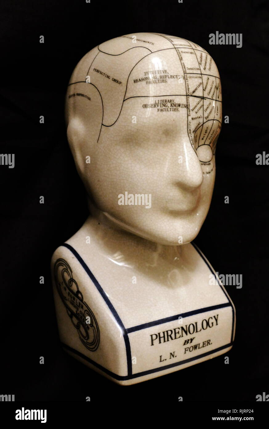 Phrenological head showing chart of areas of the brain. Phrenology is a pseudo medicine, primarily focused on measurements of the human skull, based on the concept that the brain is the organ of the mind, and that certain brain areas have localized, specific functions or modules. Developed by German physician Franz Joseph Gall in 1796, the discipline was very popular in the 19th century - Stock Image