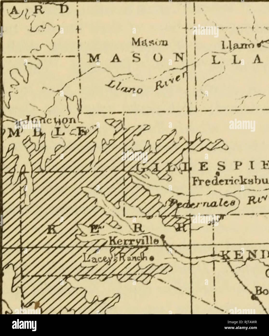 The Auk  Birds  vol  xxvnn 1911 J La< bt, Birds of KerrviUe, Texas