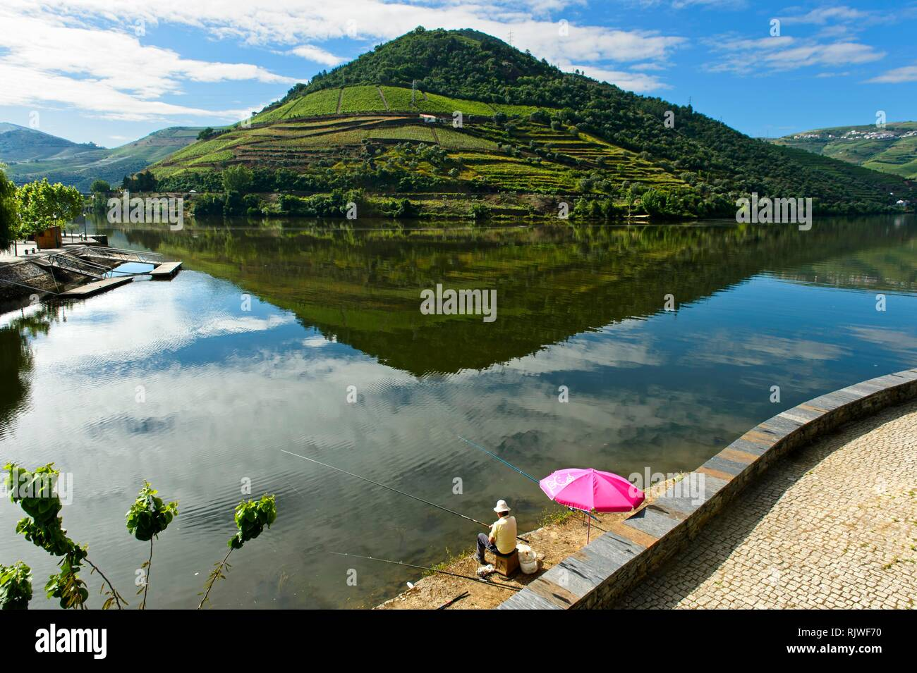 Angler at Douro River, Viewpoint Quinta das Carvalhas behind, Pinhao, Douro Valley, Portugal - Stock Image