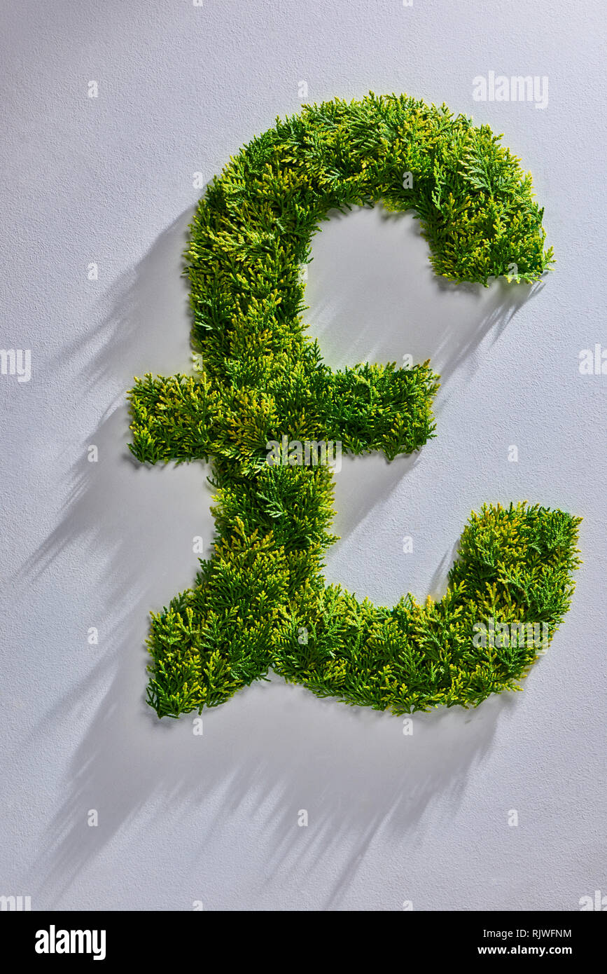 Topiary Tree in the Shape of the British Pound Symbol - Stock Image