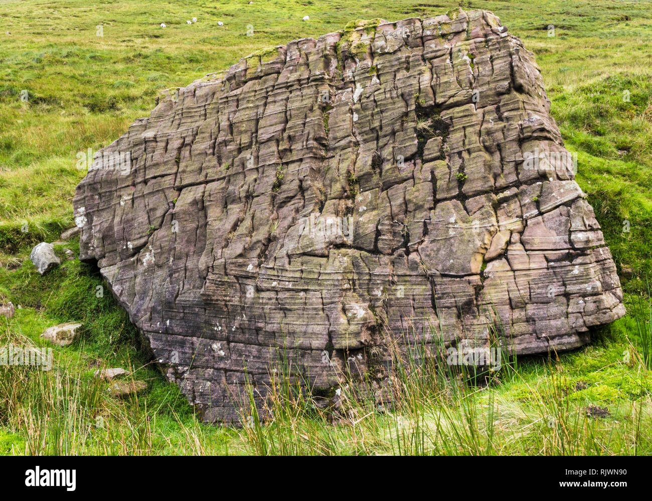 Large boulder of cross bedded red sandstone of Devonian age (Old Red Sandstone) in the Galty Mountains (Galtee Mountains), County Tipperary, Ireland - Stock Image
