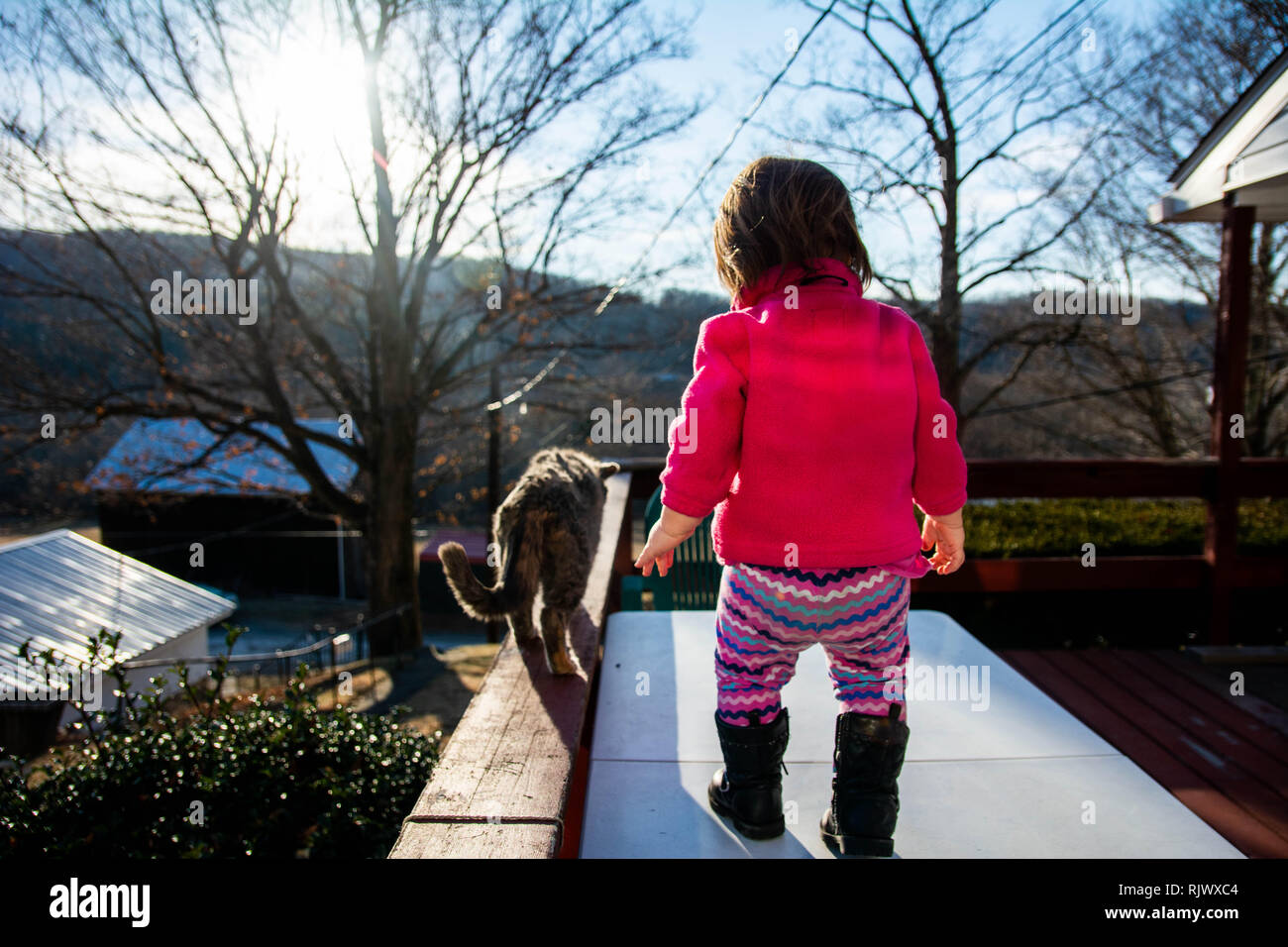 Toddler girl follows a cat while the sun shines on a winter day in Pennsylvania, USA. - Stock Image