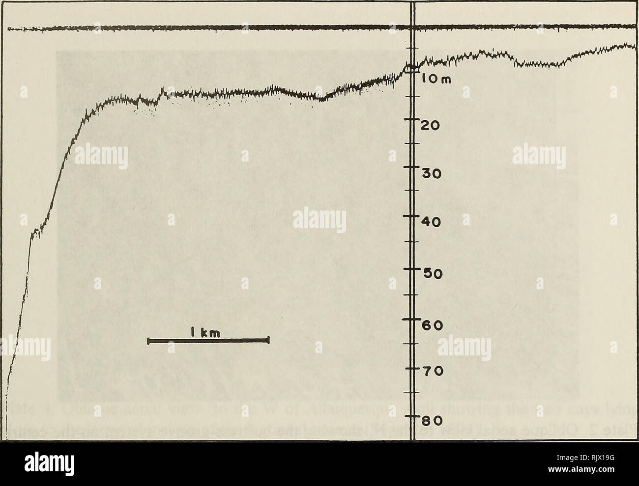 """. Atoll research bulletin. Coral reefs and islands; Marine biology; Marine sciences. 29. Figure 8. Echosounder bathymetric profile of the leeward terrace and outer slope at Albuquerque atoll. Note the presence of a truncation (sandy bench or step) at about -40 m depth on the outer slope. ' . â """". -/ ' ' -r-? - ^*> Â«Ri£»"""""""""""":' v- -'' 'â¢?;_ ^'""""""""""""'j' .-""""""""'' Aft* """"' <? r ^* d