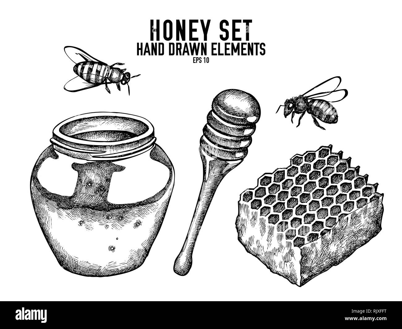Vector collection of hand drawn black and white honey - Stock Image