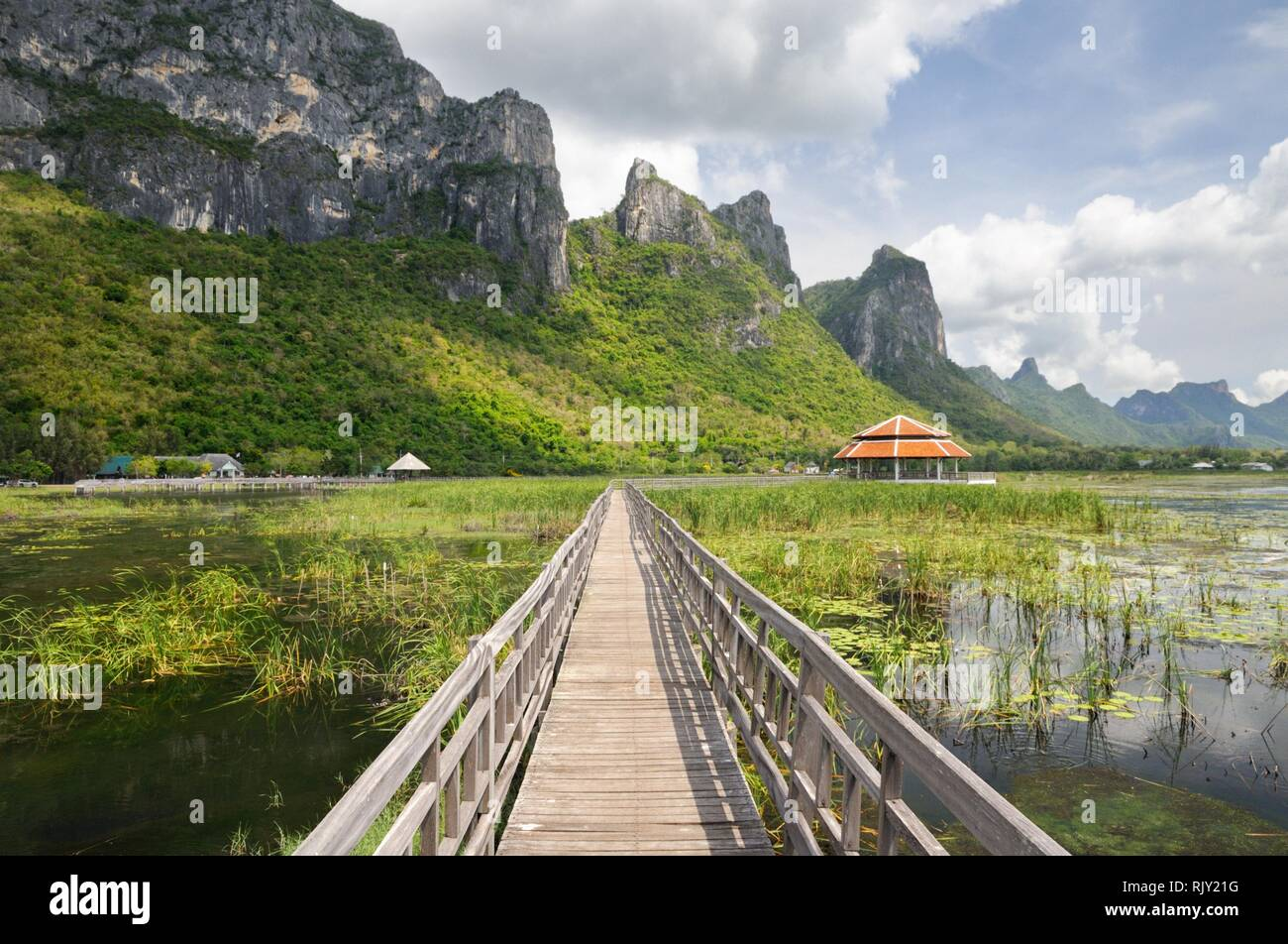 Wooden footpath through wetlands and swamp covered with water lily and reed at the foot of the mountain in Khao Sam Roi Yot National Park in Thailand Stock Photo