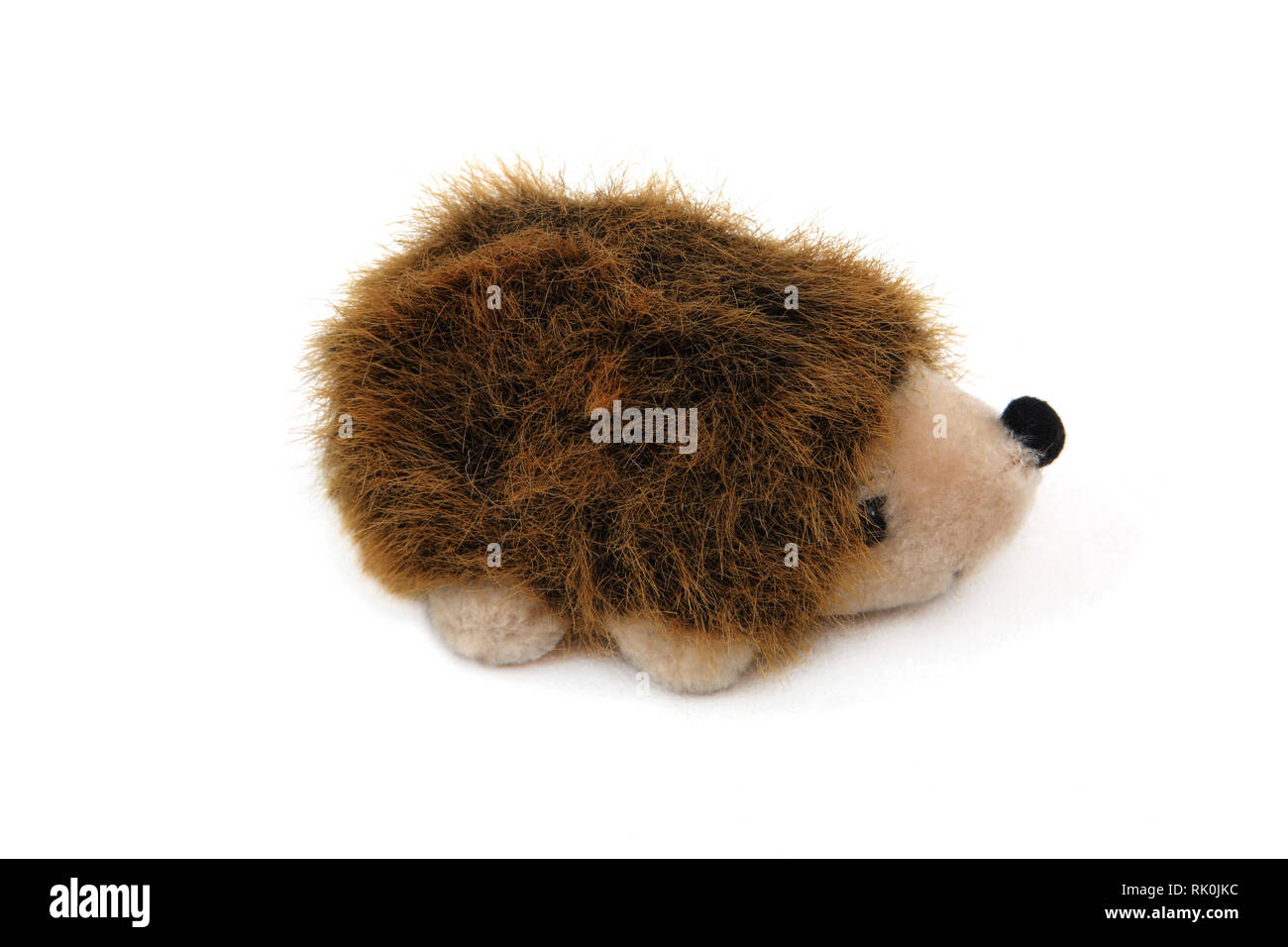 Toy Hedgehog - Stock Image