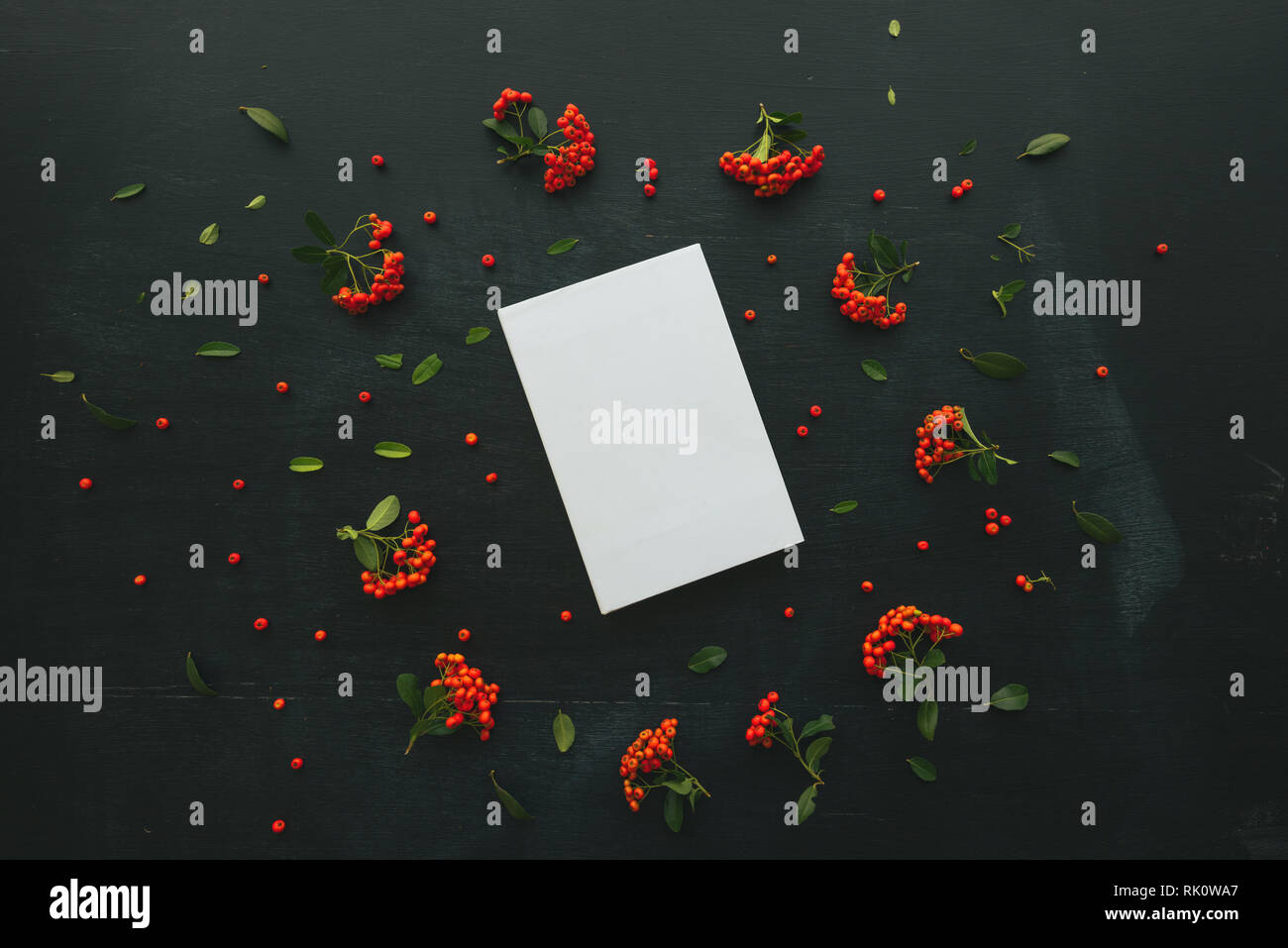 Hardcover book cover design mock up top view overhead shot with floral arrangement, retro toned flat lay minimalism - Stock Image