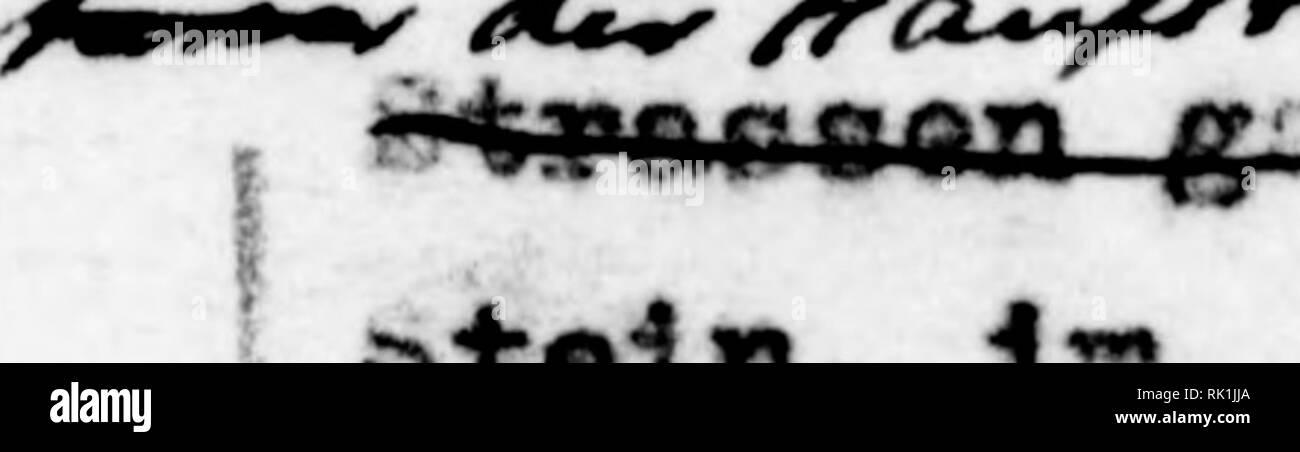 . Arthur and Fritz Kahn Collection 1889-1932. Kahn, Fritz 1888-1968; Kahn, Arthur David 1850-1928; Natural history illustrators; Natural history. 7. Jahre lang irnunterbrochen von «i«lMPe«» tousend Speziallsten der vereohledei)en Gebiete Toa Bergv* erkfachm€inn biß siim Be— vot^lkerungsetatiotikenr^und von den Schmetterllngsea^imlem bis [ zu den Bailonföhrem in den iMctte* olken — Jeder lieferte einen ^leinen Strich zu de« Tortraet. dae/r^ls Landeskunde Ideütlna *^^iSrä bie isoxa v;cltkrieg I unter turkieciiür Herrechei't xti& hermetiedi gegen die Auesenwelt nbge- ^^ Bchloeoen. Juden und - Stock Image