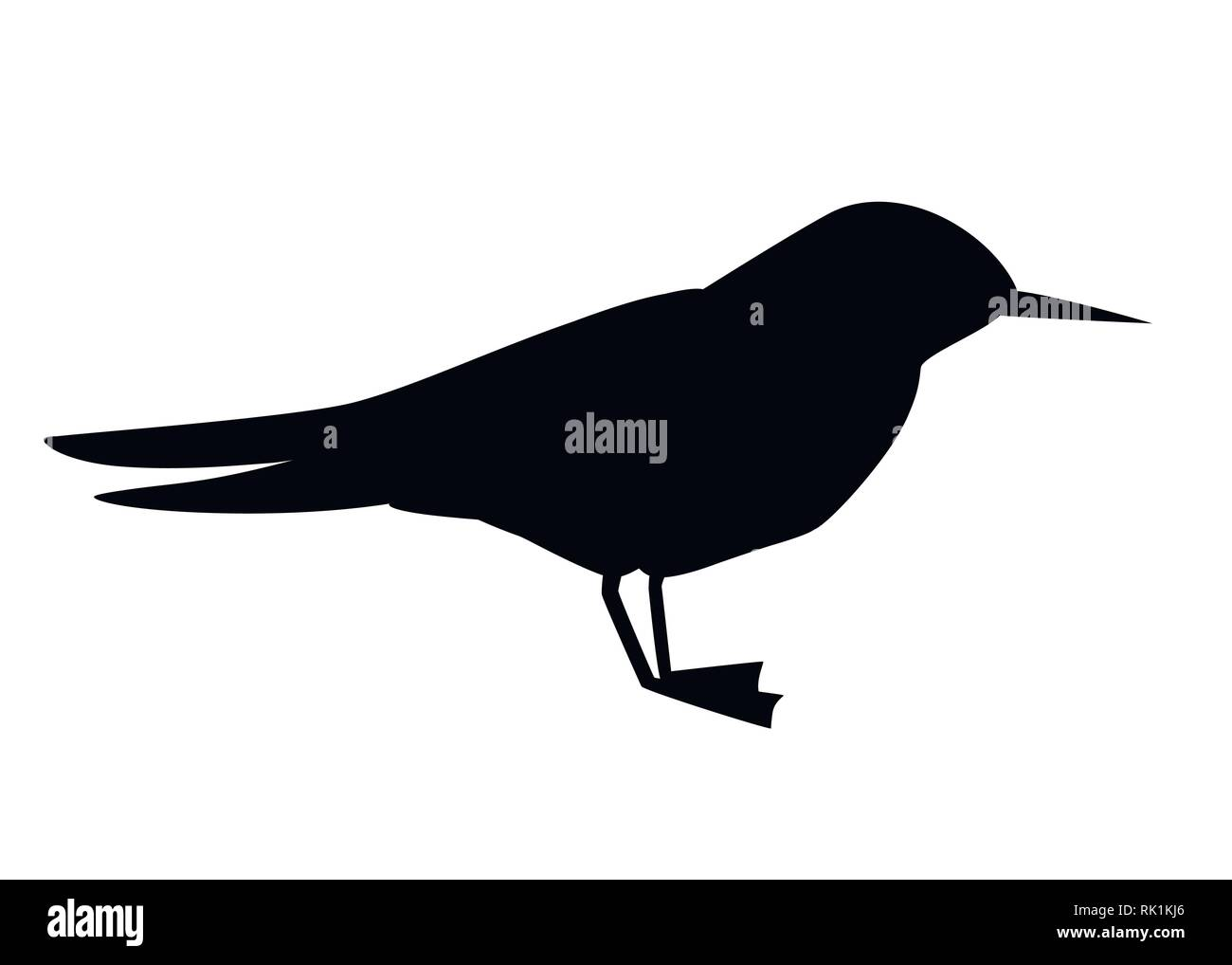 Black silhouette. Flying white bird. Arctic Tern. Sterna hirundo. Arctic animal, cartoon flat design. Vector illustration isolated on white background - Stock Vector