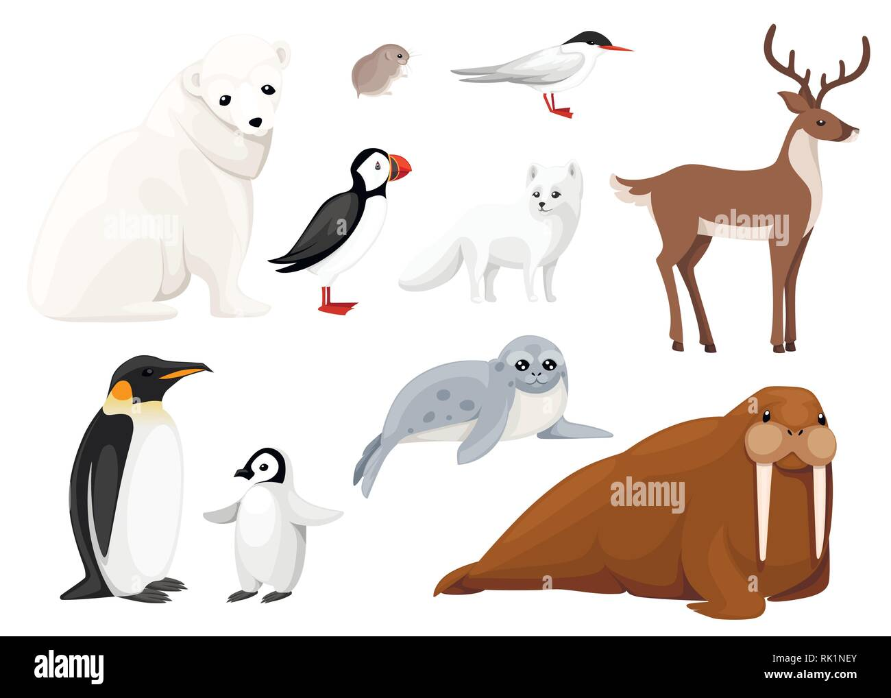 Set of arctic animals icon. Birds and mammals. Arctic animal, cartoon flat design. Vector illustration isolated on white background. - Stock Vector