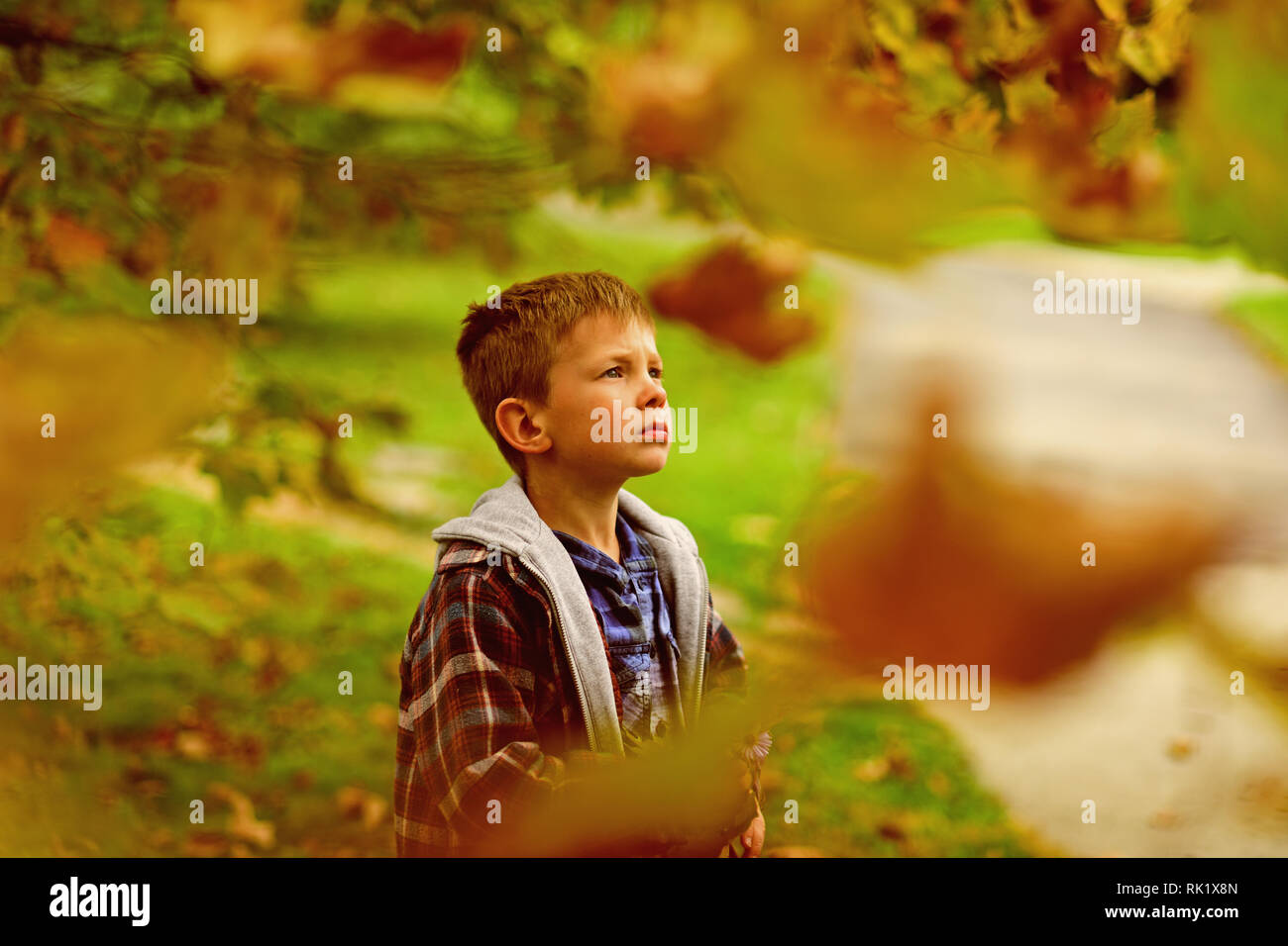 Hope and dreams. Little boy full of hope for bright future. Little boy daydreaming in garden. I do hope - Stock Image
