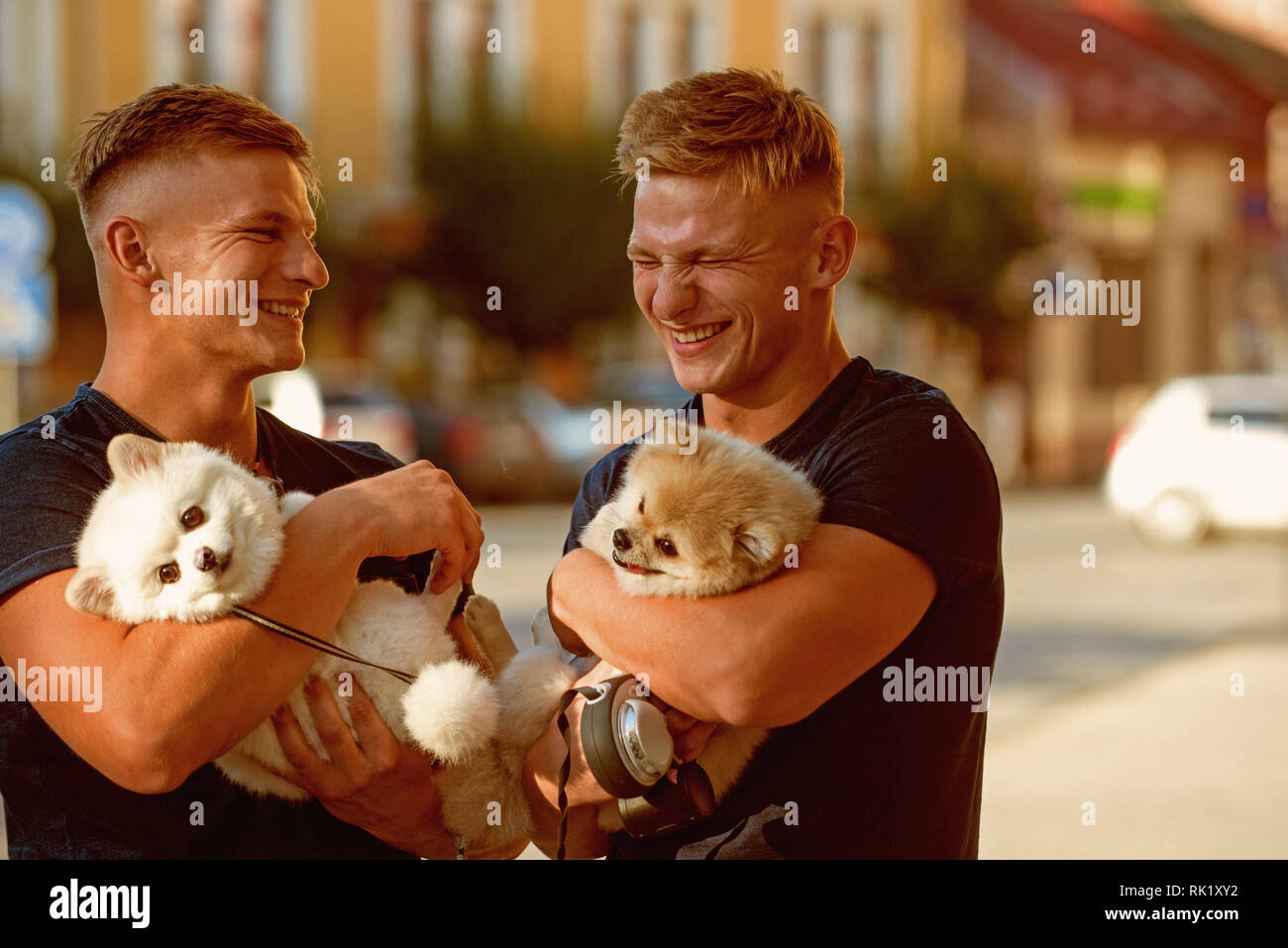 Nothing else but happiness. Happy family on walk. Muscular men with dog pets. Twins men hold pedigree dogs. Happy twins with muscular look. Spitz dogs - Stock Image