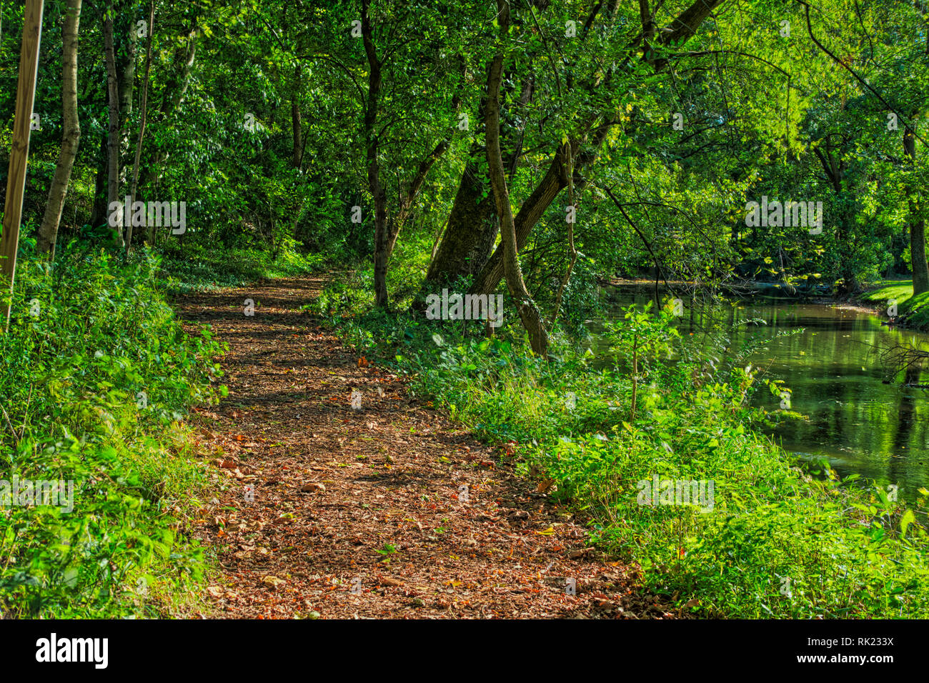 Natures Beauty Shines Through A Stream Pathway Stock Photo Alamy