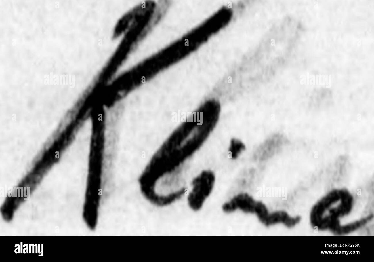. Arthur and Fritz Kahn Collection 1889-1932. Kahn, Fritz 1888-1968; Kahn, Arthur David 1850-1928; Natural history illustrators; Natural history. .'••.. ist das Farbaplild des W^stenhi raels. Bin 3t;,aa^arte3 Blau neben oinoa He.^uaUoMBüi'ol und rieben'illfta>iii «in sohmerzendeu^ Violett r/i^ H5ntgenr5hre .^ SpektruB des Wüstenhi frostigen Tages des über den SkiZeldem an jedem Abend an das ist das kalte lels, wljr^s der llordlander nxir von den Wlxite^ oder droben in der trockenen Höhe A]^n erlebt^So schreibt die Uatur afel des HiTntuel: Du stehst f' e grosse nicht ntir geog5^i)hisoh sonde - Stock Image
