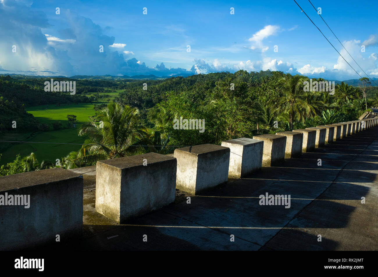 Cement Block barricade on Village Road, Overlooking Green Rice Field - Leyte, Philippines - Stock Image