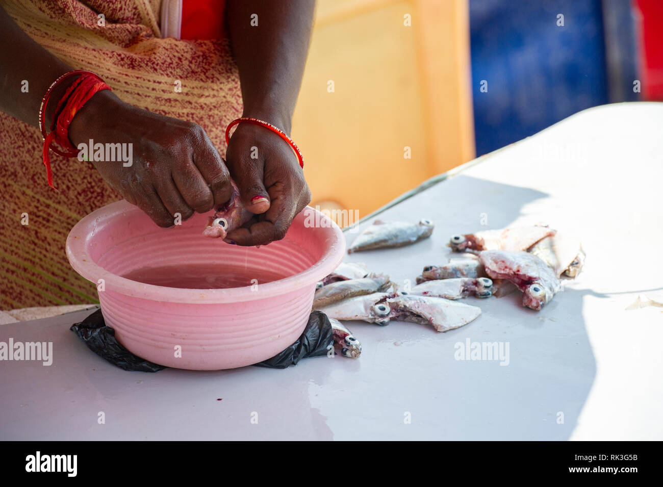 An Indian lady prepares small fish for cooking in a fish market - Stock Image