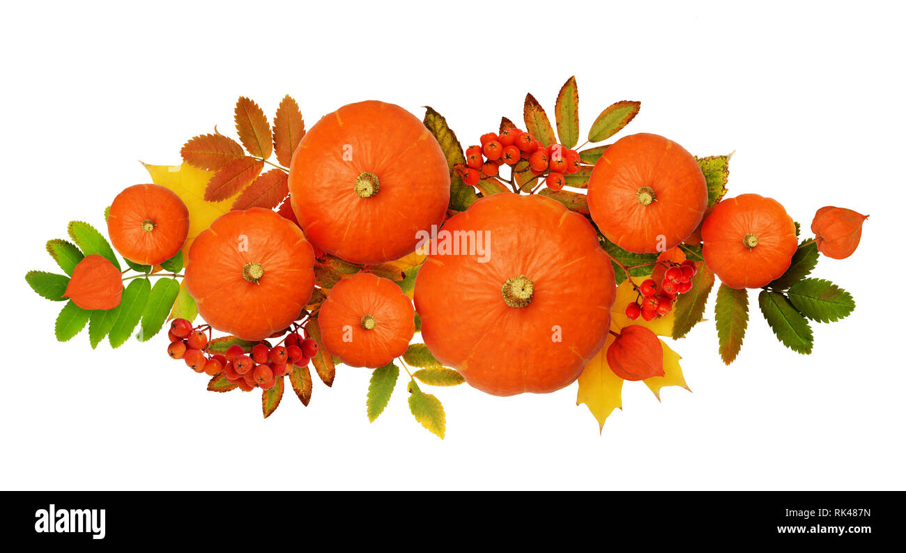 Autumn arrangement with pumpkin, rowanberries and colorful leaves isolated on white. Top view. Flat lay. Stock Photo