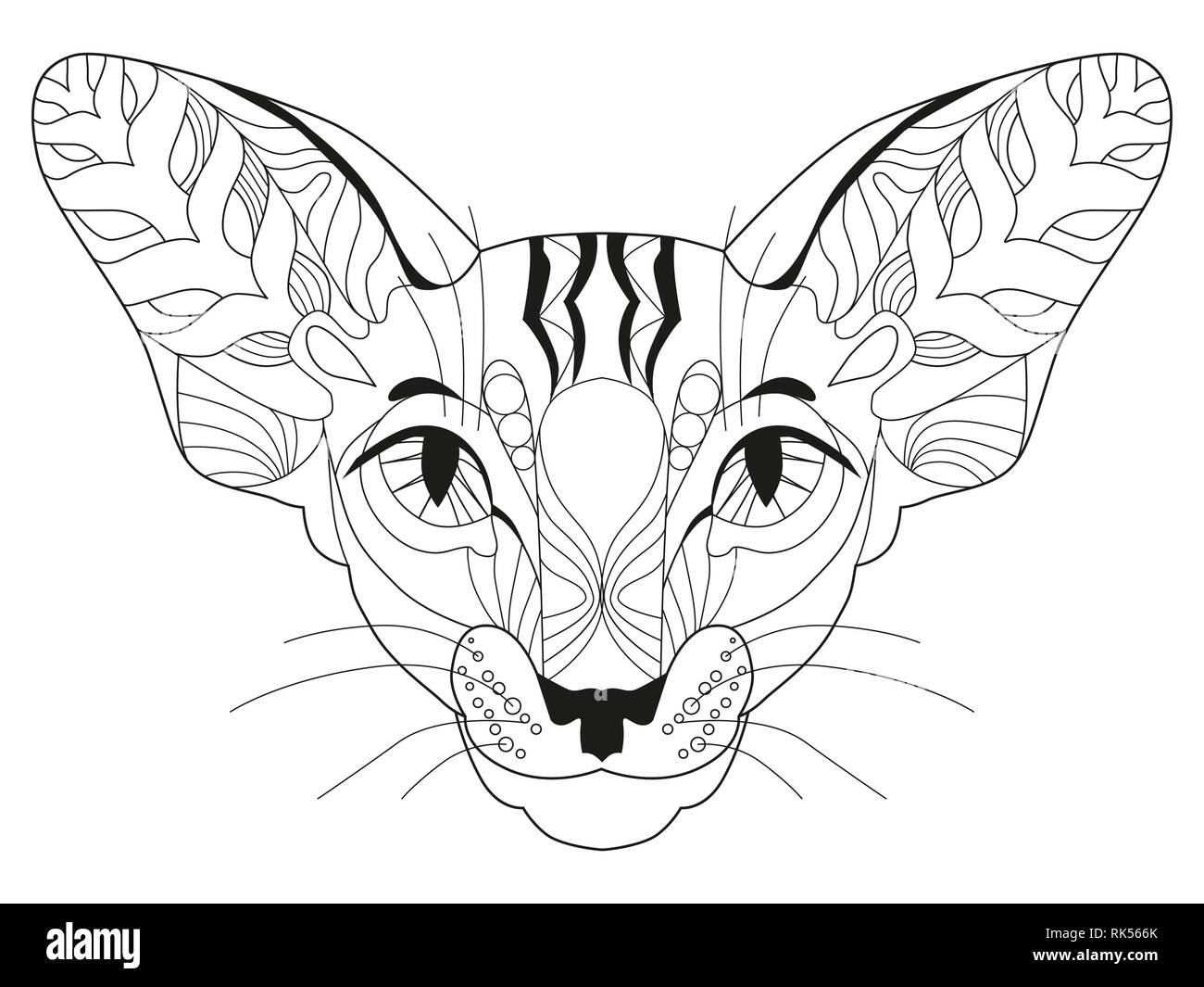 zentangle stylized head of cat hand drawn lace vector illustration RK566K