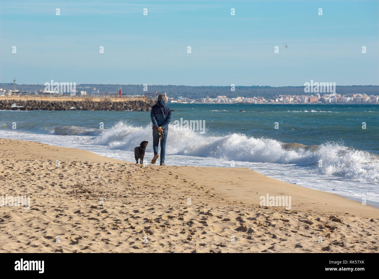 Palma de Mallorca - The beach of the city and and the man at the rest with the dog. - Stock Image