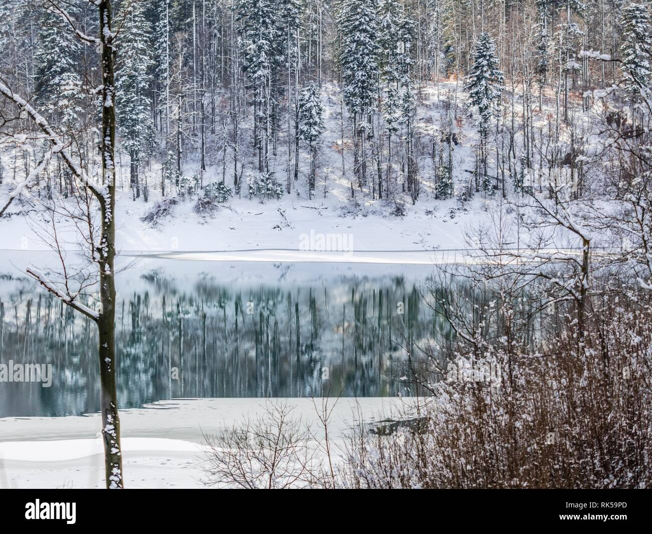 Lokvarsko jezero Lokve lake in Croatia during Winter Stock Photo