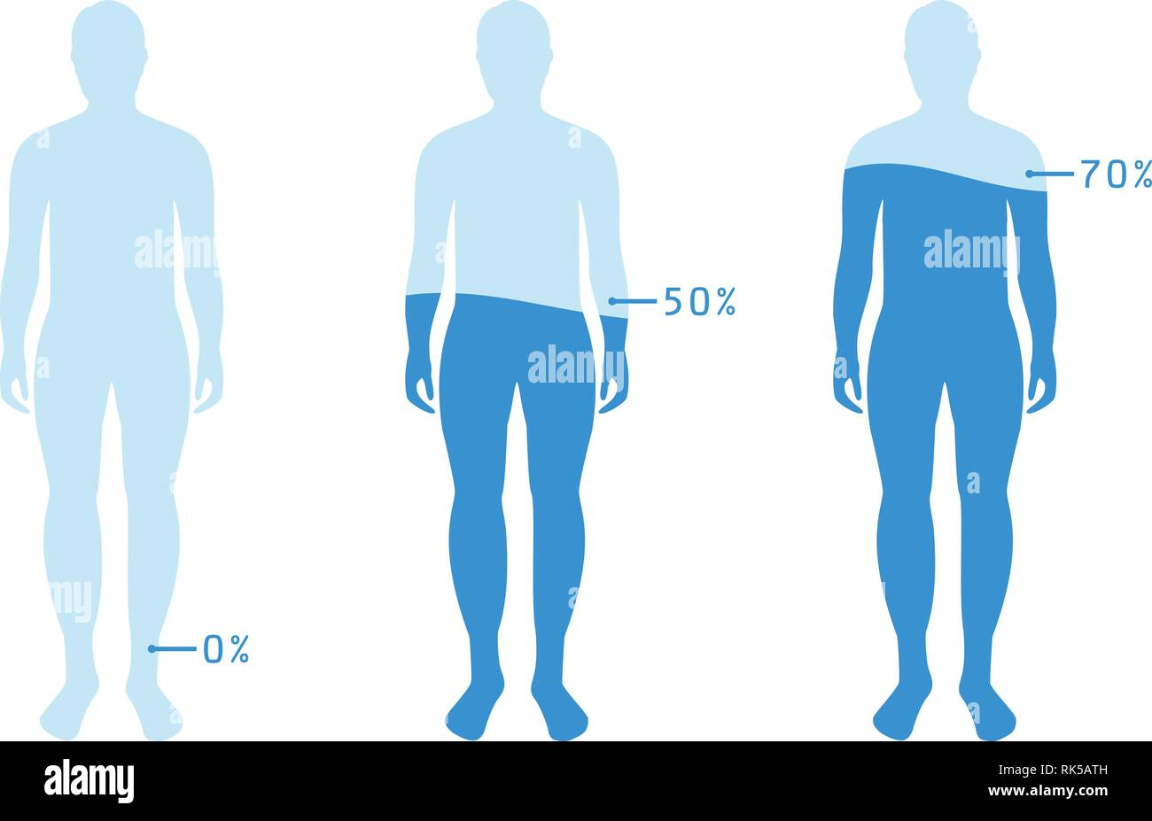 infographic showing water percentage level in human body vector illustration water balance stock vector image art alamy https www alamy com infographic showing water percentage level in human body vector illustration water balance image235531537 html