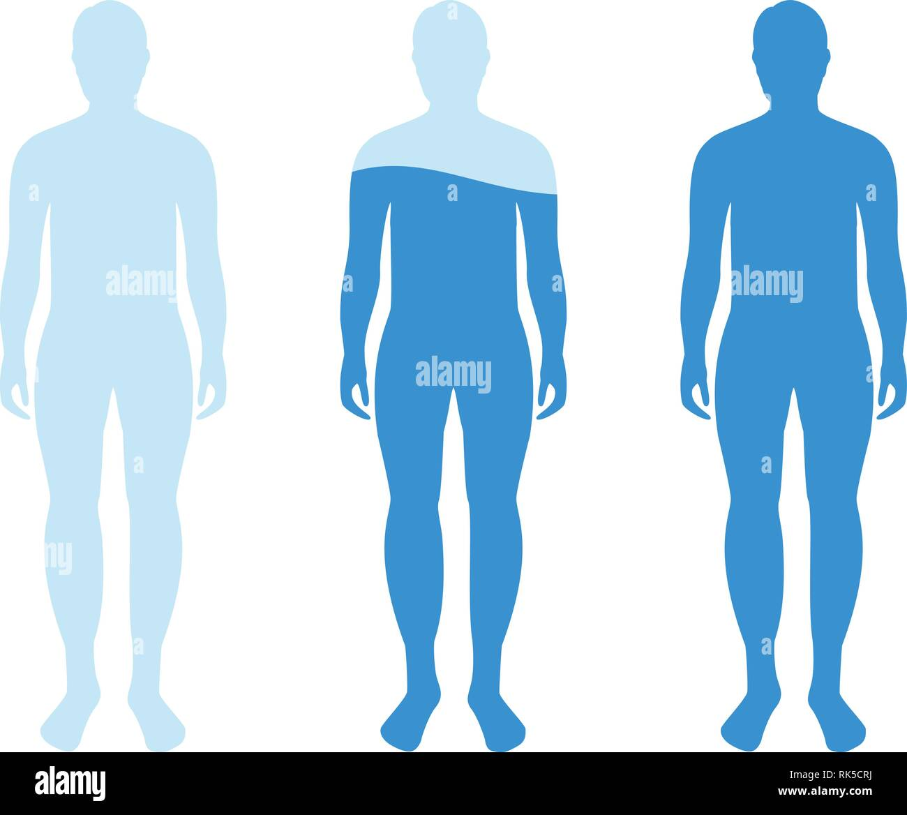 infographic showing water percentage level in human body vector illustration water balance stock vector image art alamy https www alamy com infographic showing water percentage level in human body vector illustration water balance image235533078 html