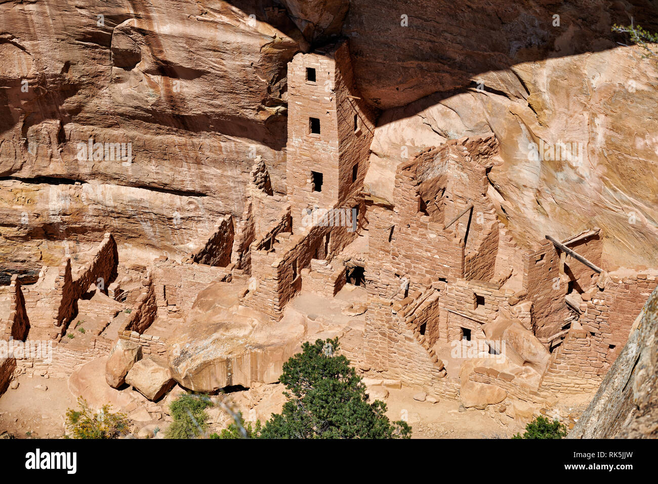 Square Tower House, Cliff dwellings in Mesa-Verde-National Park, UNESCO world heritage site, Colorado, USA, North America - Stock Image