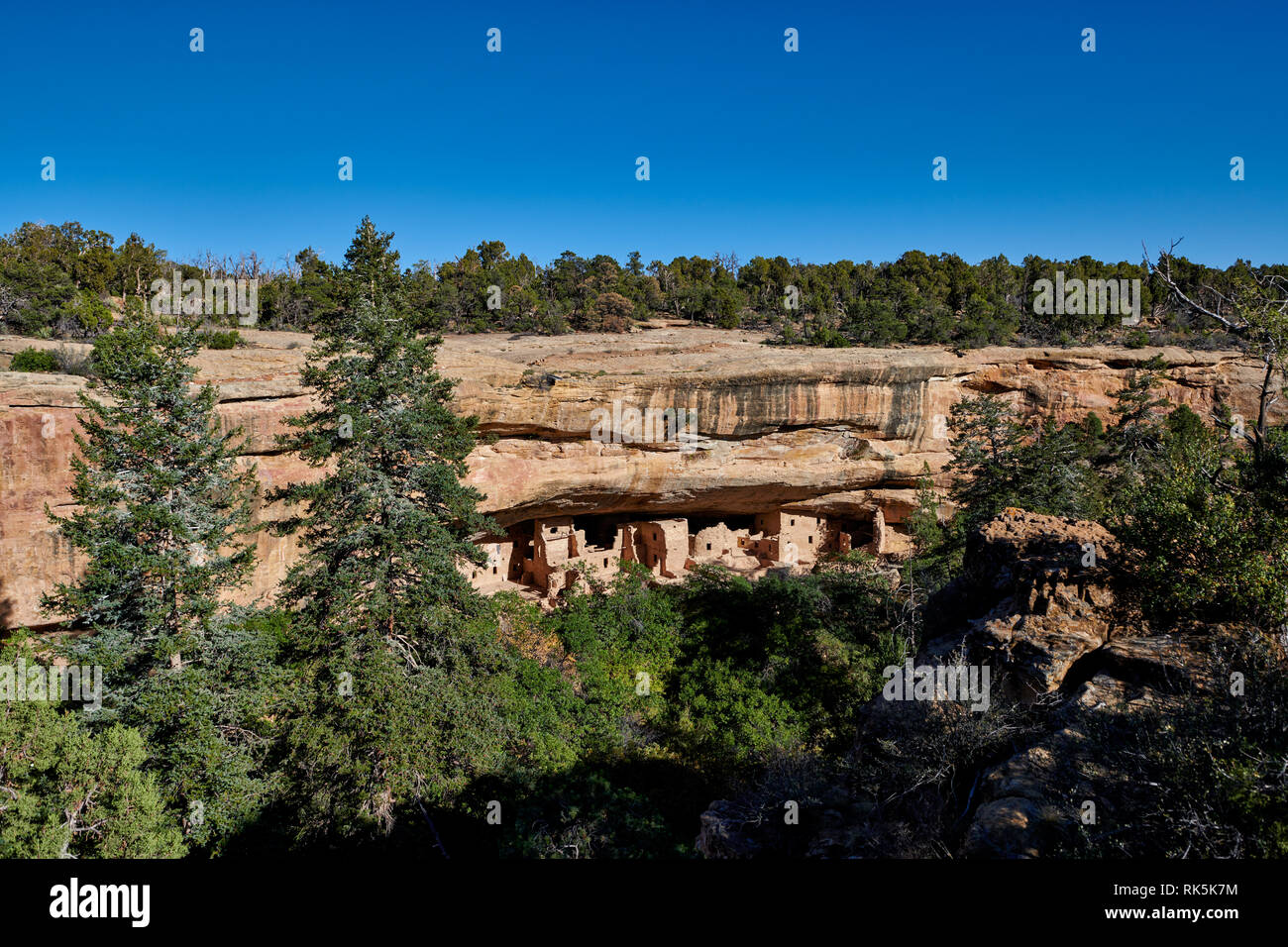 Spruce Tree House, Cliff dwellings in Mesa-Verde-National Park, UNESCO world heritage site, Colorado, USA, North America - Stock Image