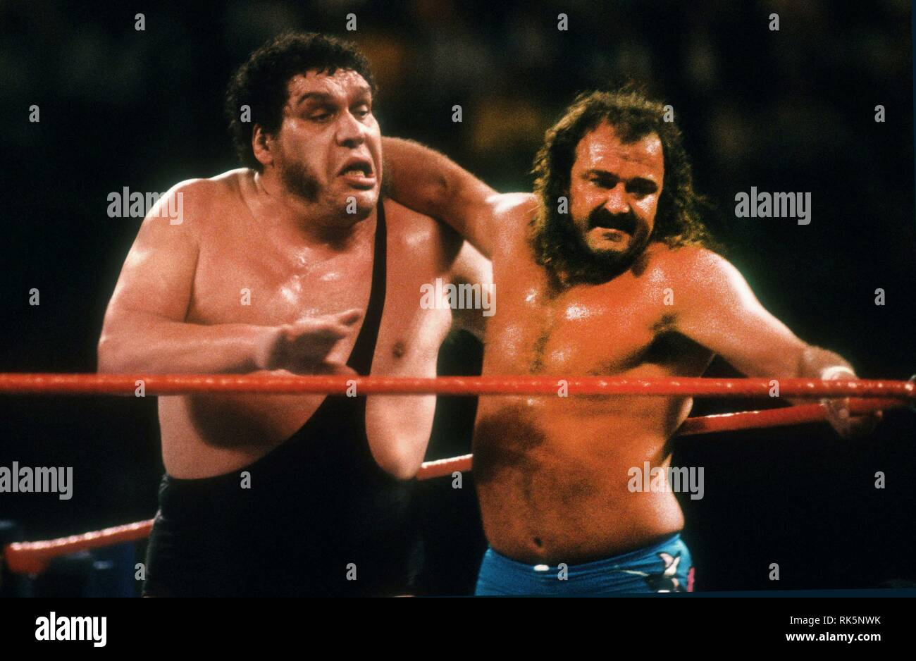 andre the giant hbo download free