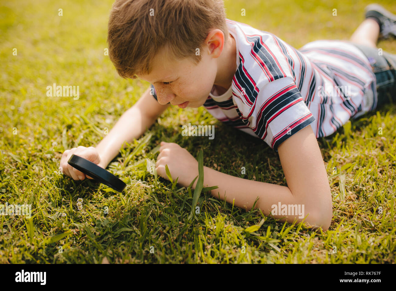 Caucasian boy exploring garden grass with his magnifier. Young boy looking through magnifying glass at the grass. - Stock Image