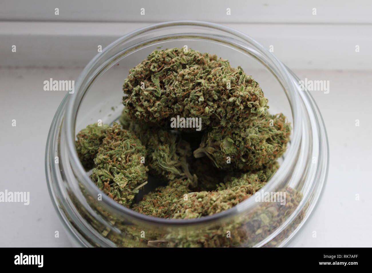Fat Weed Nugs in Glass Jar - Stock Image