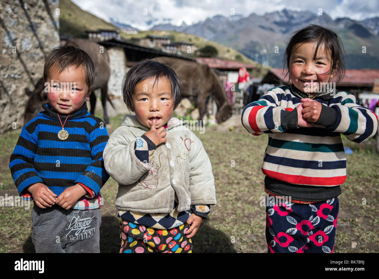 Three children in the remote village of Laya, Gasa District, Snowman Trek, Bhutan - Stock Image