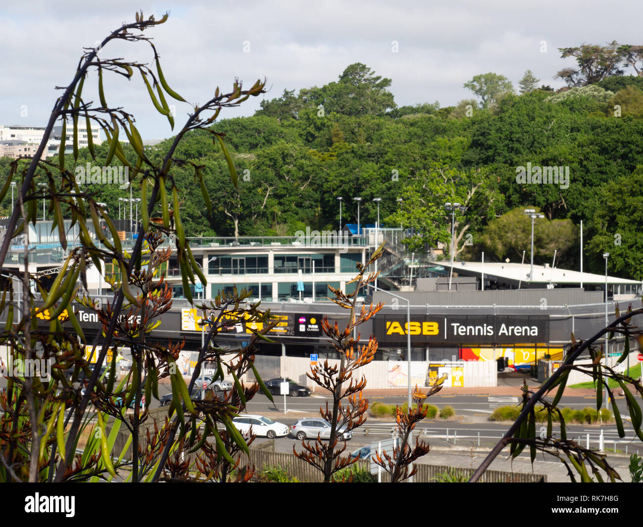 Auckland Road Stock Photos & Auckland Road Stock Images - Alamy