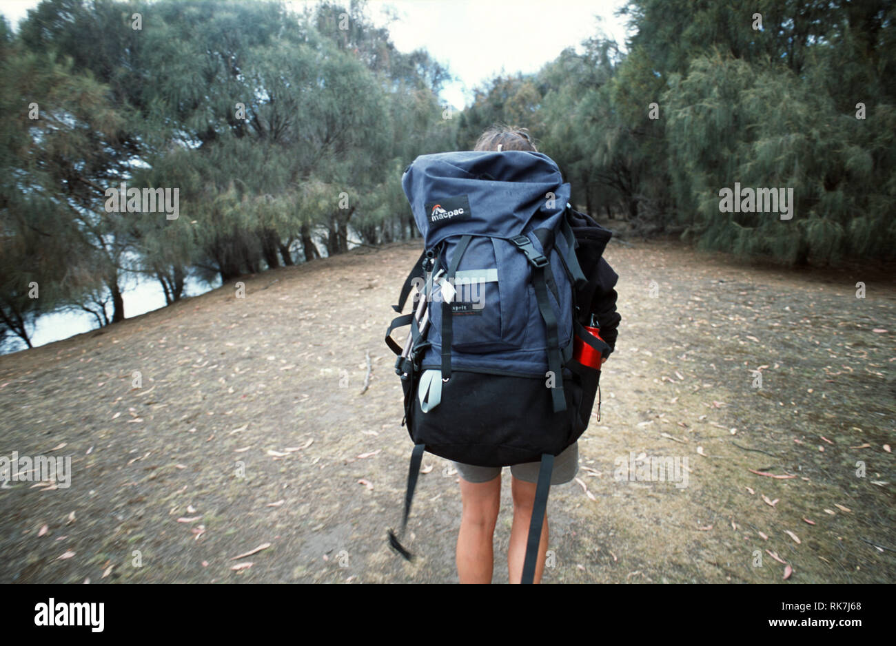 A guide leads the way on the Maria Island Walk. The latest trend on the Tasmanian travel scene, luxury bush walks couple gentle walks in the state's w Stock Photo