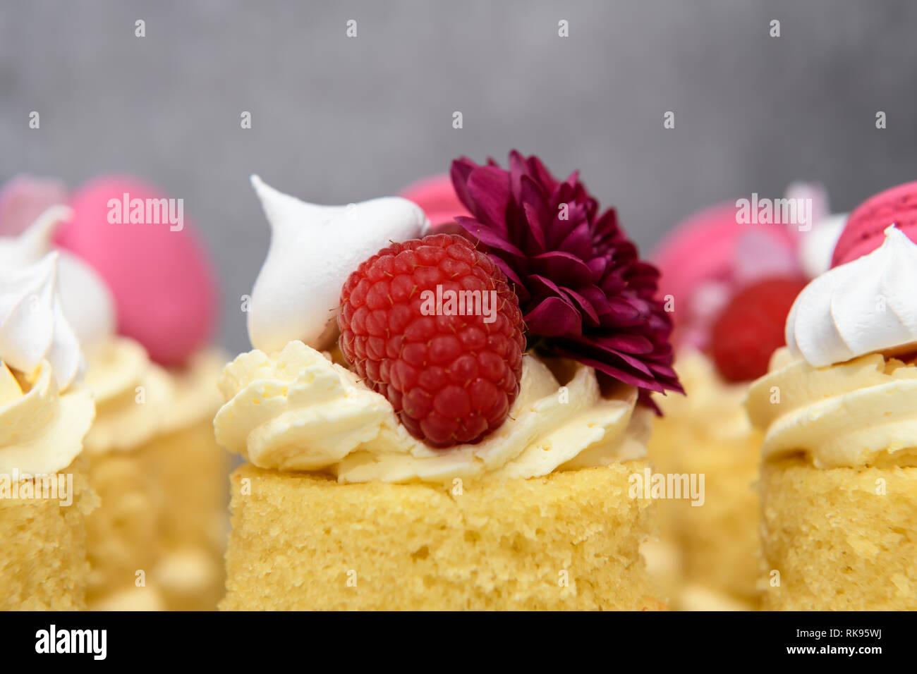 Amazing Individual Naked Mini Birthday Cakes Stock Photo 235615454 Alamy Funny Birthday Cards Online Inifofree Goldxyz