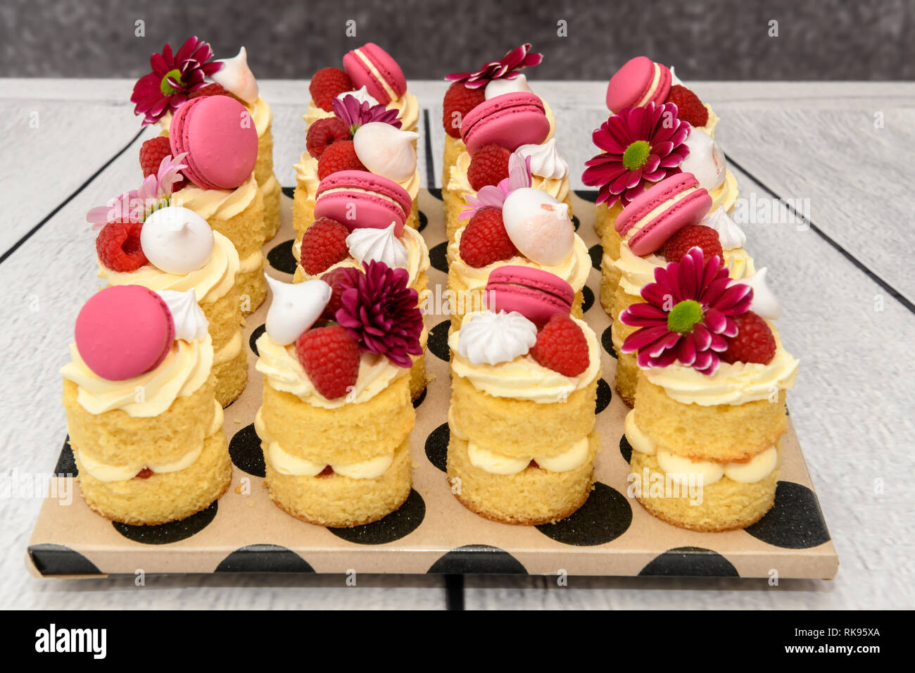 Awesome Individual Naked Mini Birthday Cakes Stock Photo 235615474 Alamy Funny Birthday Cards Online Inifofree Goldxyz