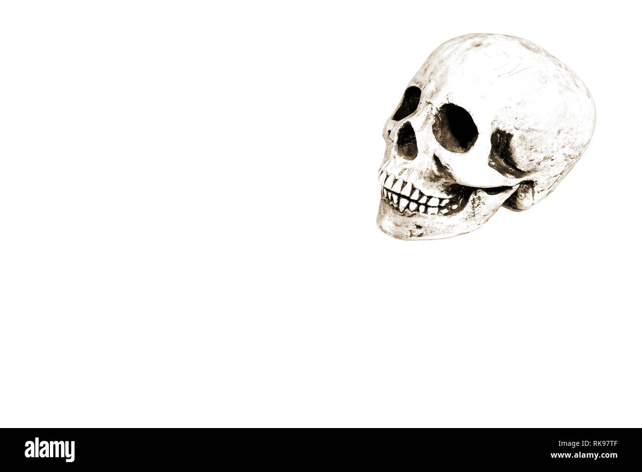 Interesting illustration of a skull on white A4 paper with plenty of space for text or introduction of other elements. Good image for Halloween or Mar - Stock Image