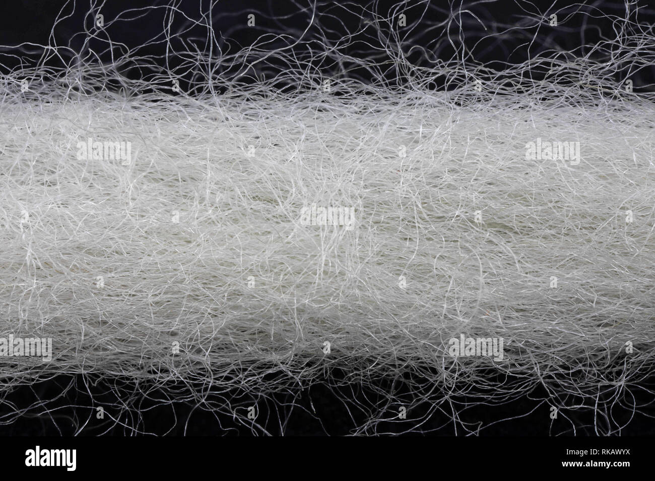 extreme close-up of a white woolen thread - Stock Image